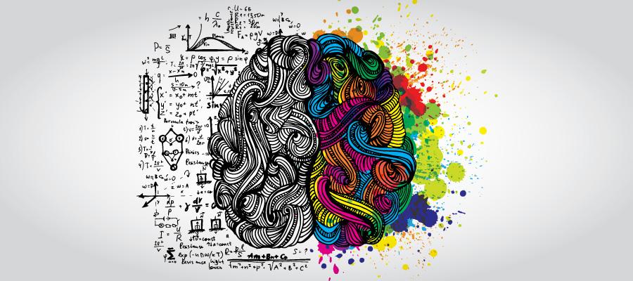 İnsanlar Nasıl Görür, Okur, Odaklanır ve Hatırlar?